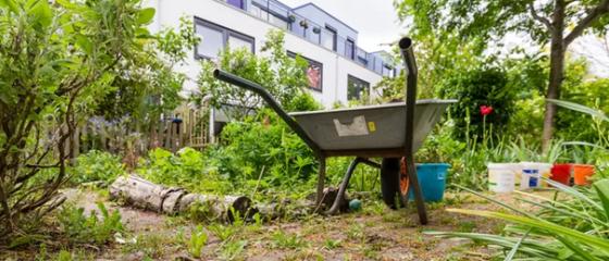 AD Utrecht besteedt aandacht aan Sociaal Tuinieren in Houten