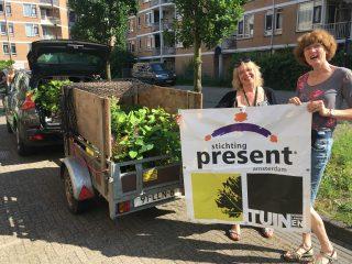 Doneer uw mooie overtollige planten aan een kwetsbare bewoner