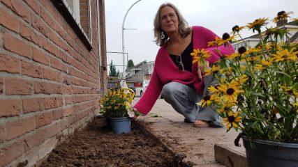 Fleurige geveltuin dankzij start Sociaal Tuinieren in Almelo